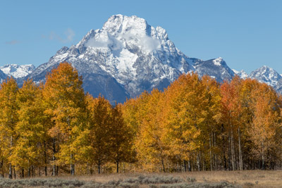 Fall colors and Mount Moran. Grand Teton National Park, Wyoming. October 6, 2019.